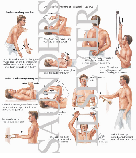 Exercises for Fracture of Proximal Humerus