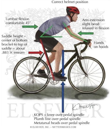 Pyörän Satulan Korkeus