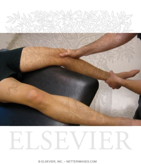 Illustration of Moving Patellar Apprehension Test from the Netter Collection
