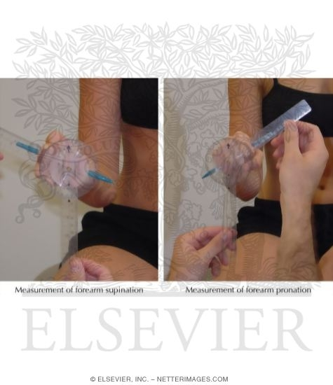 Forearm Supination and Pronation Measurements