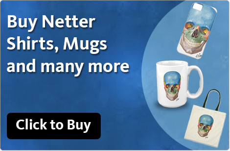 Buy Netter Shirts, Mugs and manuy more