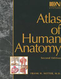Anatomy Atlas - 2E...