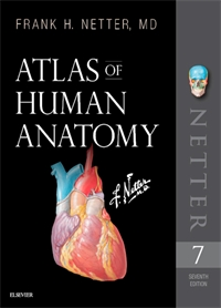 Anatomy Atlas - 7e