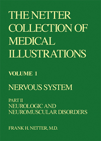 Collection of Medical Illustrations, Nervous System - Volume 1, Part 2
