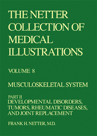 Collection of Medical Illustrations, Musculoskeletal System 2 - Volume 8, Part 2