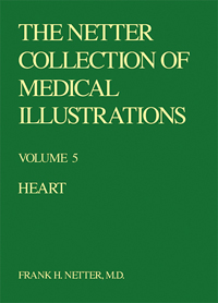 Collection of Medical Illustrations, Heart - Volume 5