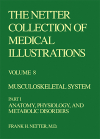 Collection of Medical Illustrations, Volume 8 - Musculoskeletal System, Part 1