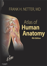 Atlas of Human Anatomy - 4th edition