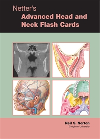Flash Cards - Advanced Head and Neck, Norton 1E