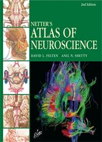 Neuroscience - Felten 2E