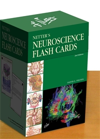 Flash Cards - Neuroscience, Felten 2E