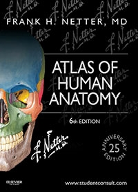 Anatomy Atlas - 6E