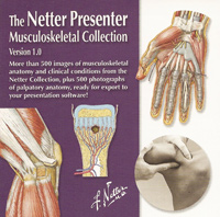 Presenter - Musculoskeletal
