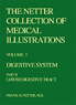 The Netter Collection of Medical Illustrations - Digestive System, Part II - Lower Digestive Tract