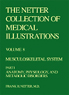 The Netter Collection of Medical Illustrations - Musculoskeletal System, Part I - Anatomy, Physiology and Metabolic Disorders