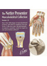 The Netter Presenter: Musculoskeletal Collection - 1st Edition