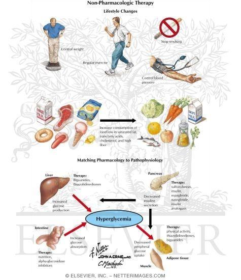 akupunktur abnehmen falkensee essen